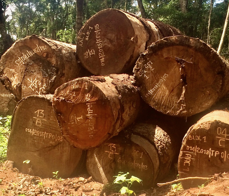 FODECO logs
